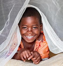 2 Mosquito Nets